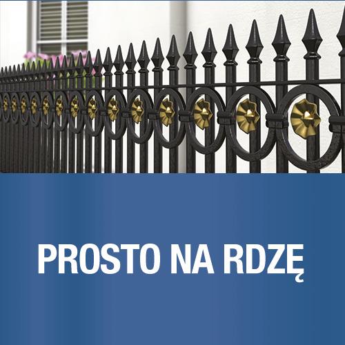 _hammerite_prosto_na_rdze2